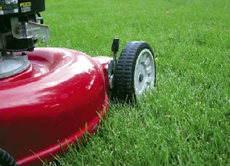 a96680_lawn