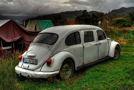 a96704_beetle