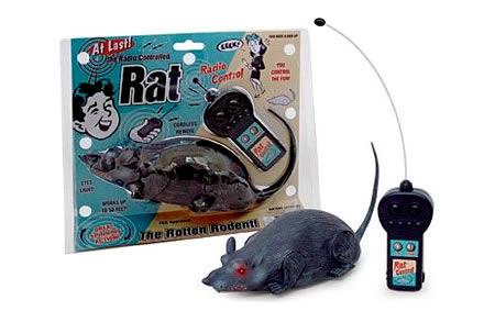 a96760_rat
